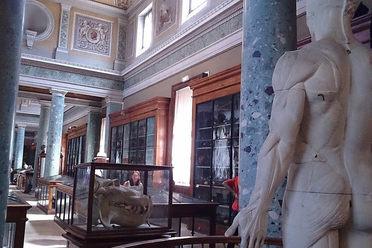 Musée d'Anatomie de Montpellier