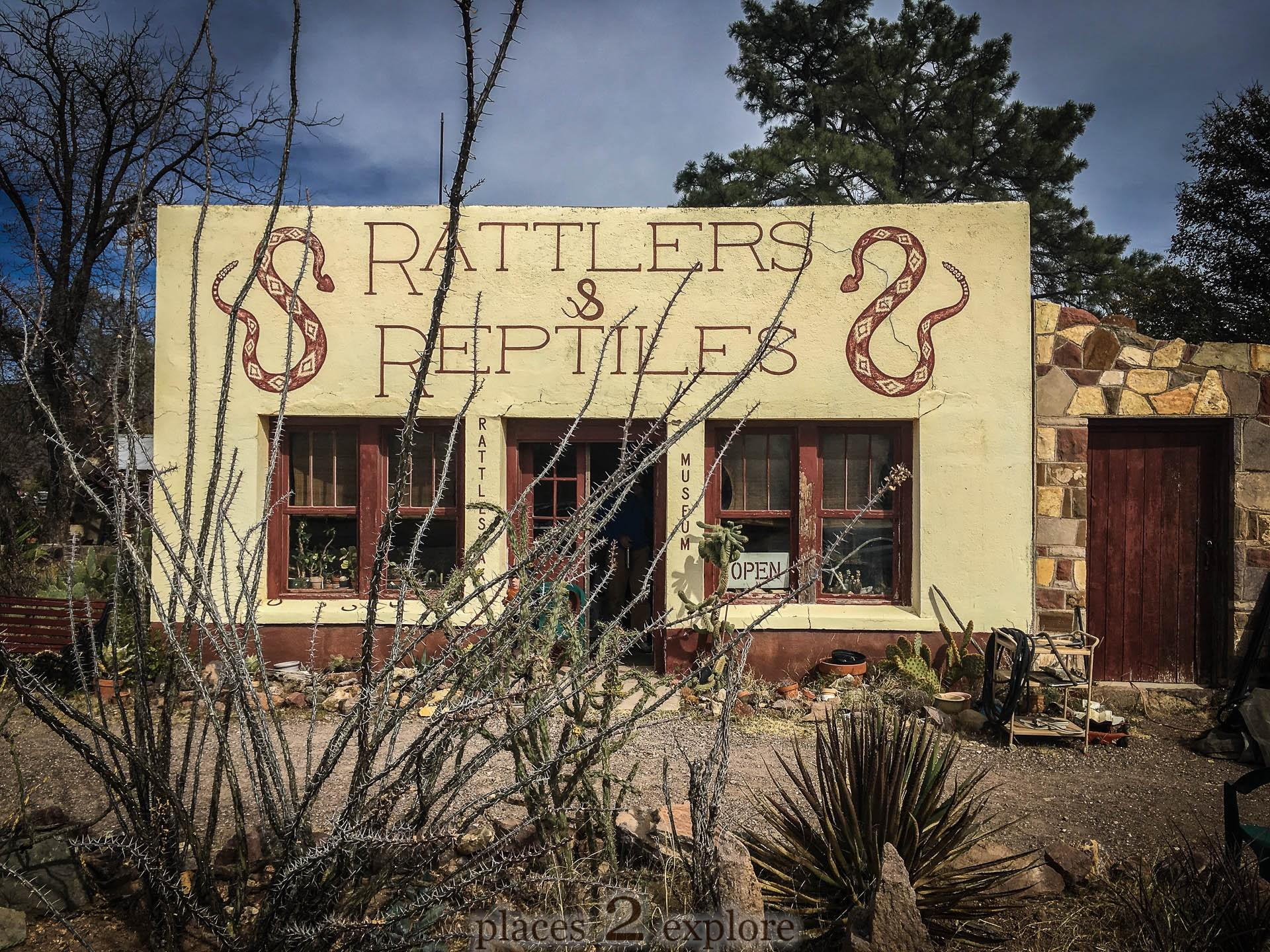Rattlers and Reptiles