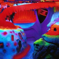 Electric Ladyland: The Museum of Fluorescent Art