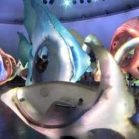 The SeaGlass Carousel