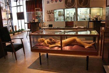 Semmelweis Medical Museum
