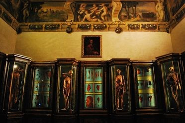 Museo di Palazzo Poggi Anatomy & Obstetrics Collection