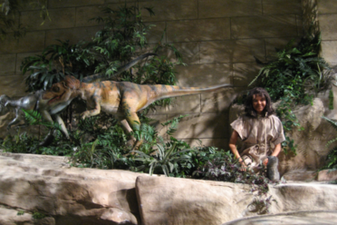 The Creation Museum
